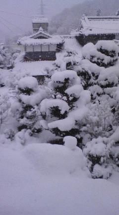 本格的 冬 到来 !